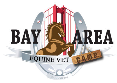 BAEC-web-logo
